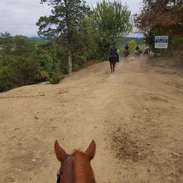 Applewood Farm Horseback Riding