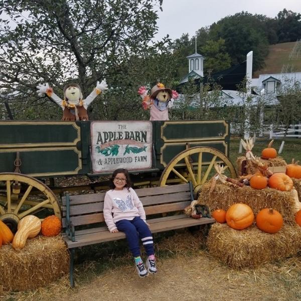 Applewood Farm in October