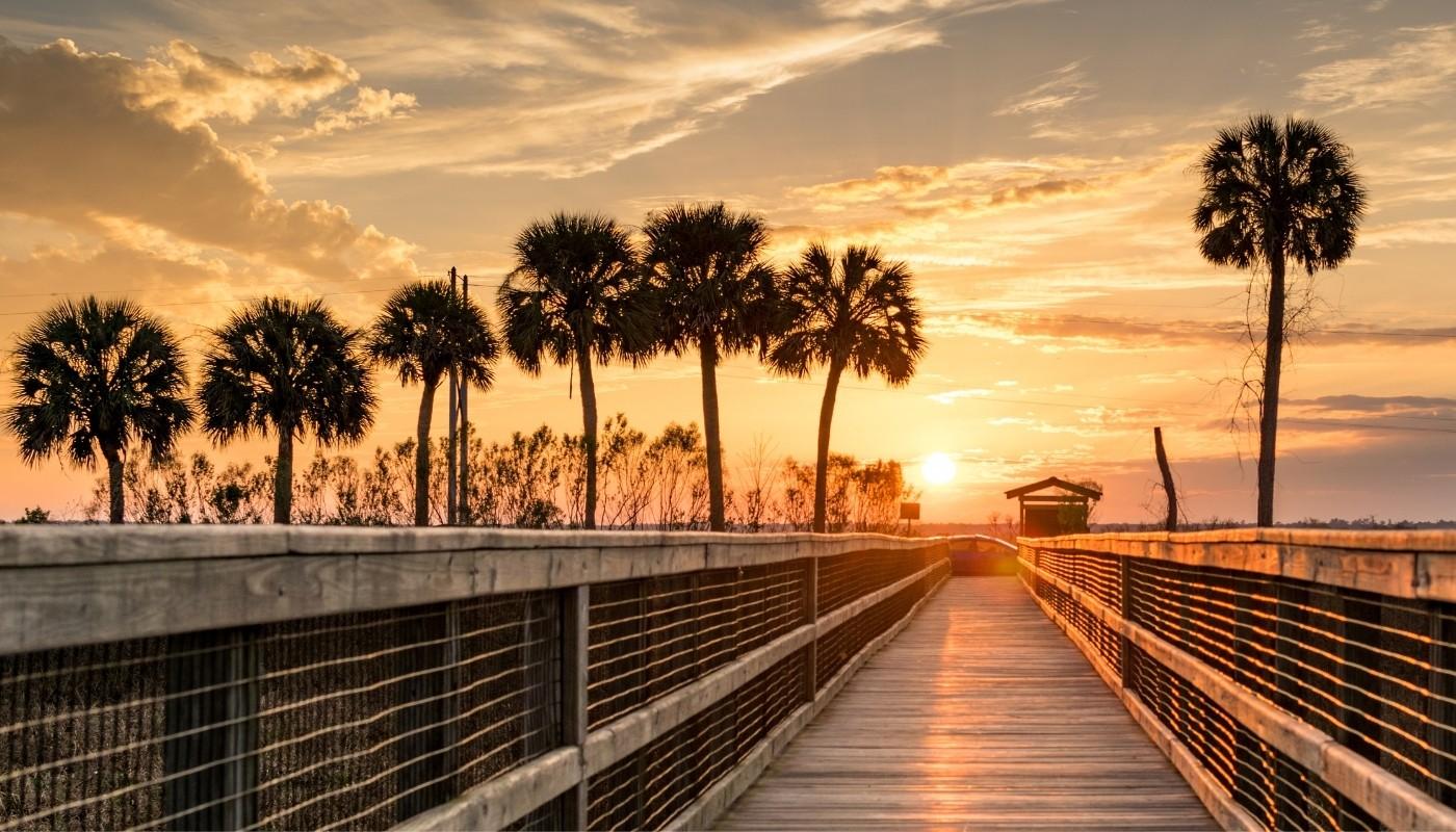 Sunset Paynes Prairie Gainesville Florida